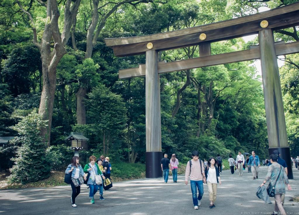 Visiting the shring of Meiji-Jingu in Harajuku.