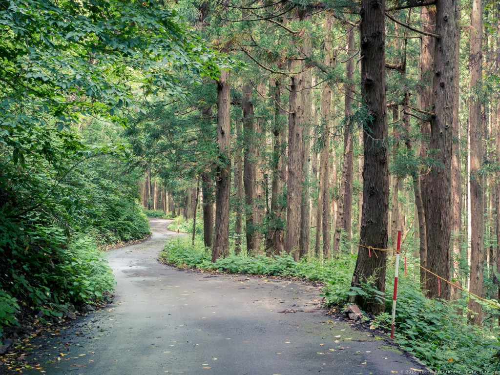 OmoshiroYama-YamaderaHike.15.09.05.-076