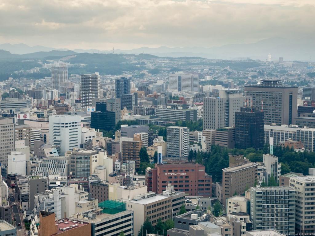 150725.SendaiRooftops._1120505