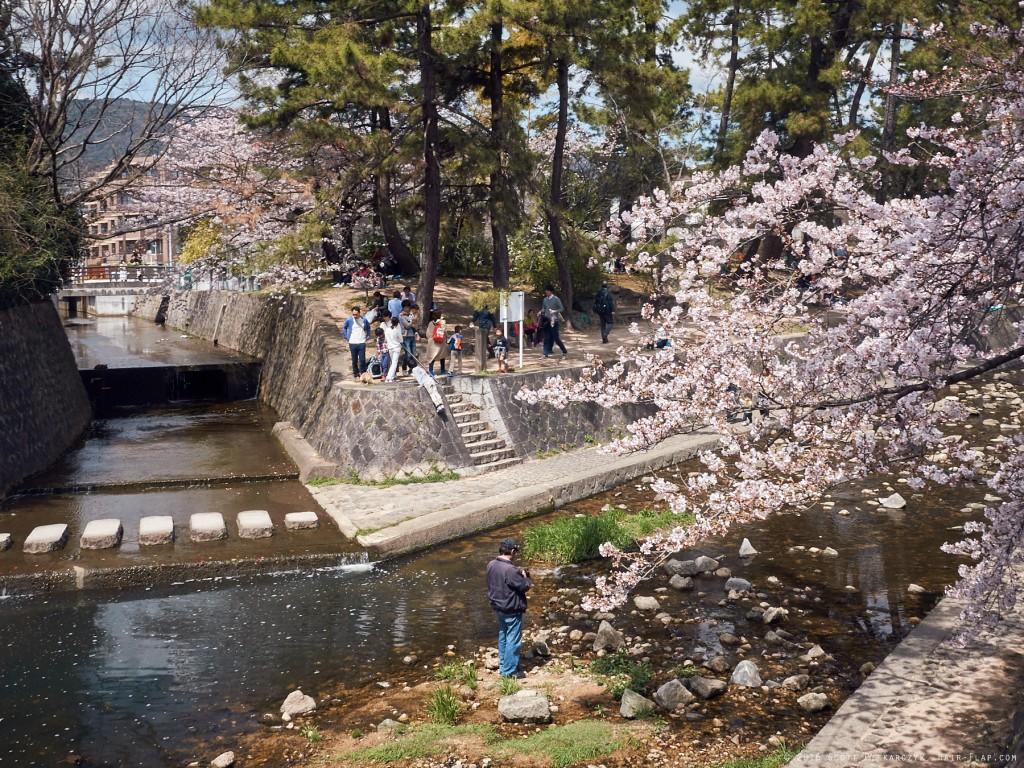 16-04-02.HanamiShukugawa._1130328