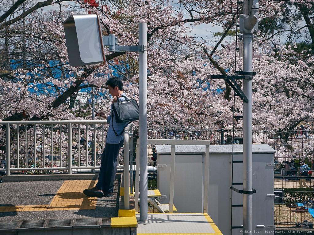 16-04-02.HanamiShukugawa._1130345