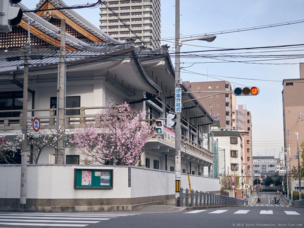 16-04-06.Uehonmachi._1020845